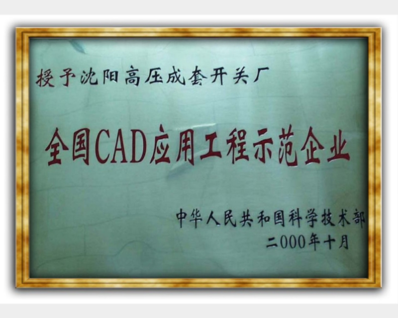 National CAD application project demonstration enterprise